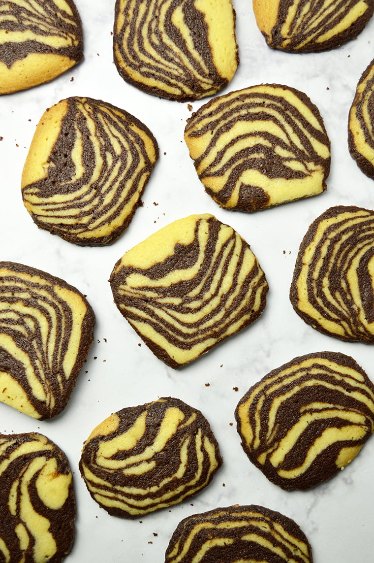zebra striped shortbread cookies